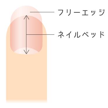 小さい爪の原因は?ピンクの部分を伸ばす方法はある?【深爪・噛み爪】