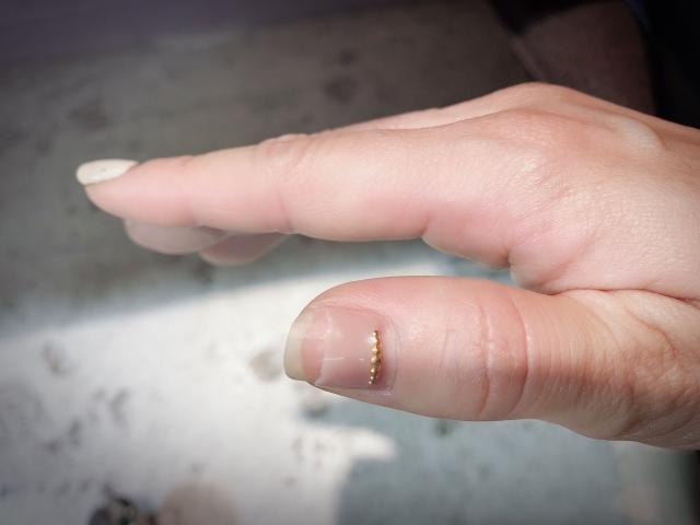 セルフネイル|柔らかい爪は取れやすい?長持ちさせる裏技とは
